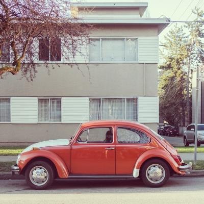 """@westendbia: """"Punch buggy!  #WestEndWhip #WestEndYVR #Vancouver #BeetleLove"""""""