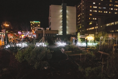 "Lumière 2015: ""Light Gives Life"" at the Davie Community Garden"