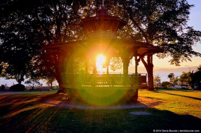 Summer Sounds Community Picnic: Reviving a Neighbourhood Tradition
