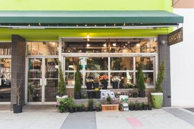 Grow Vancouver blooms in Jim Deva Plaza