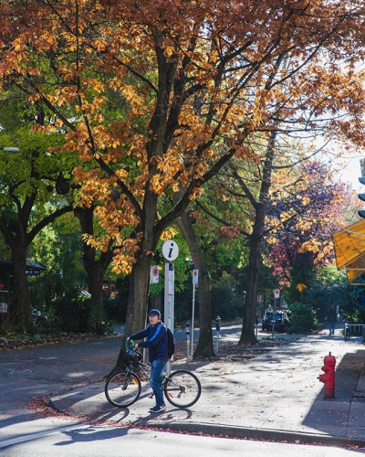"@westendbia: ""Bike weather is the best weather. #weamaze #robsonstreet #vancouverbc"""